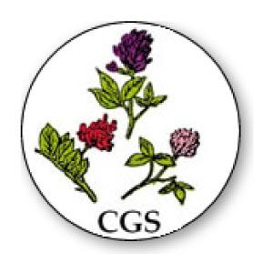 CGS Sementi